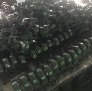 Bearing, Fkd Bearing, Pillow Block Bearing (UCP) pictures & photos