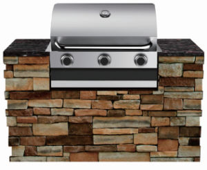 Outdoor Kitchen Barbecue Grills Built in BBQ pictures & photos