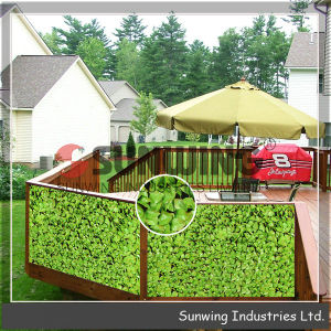 Decorative Home Garden Plastic Privacy IVY Screen Fences pictures & photos