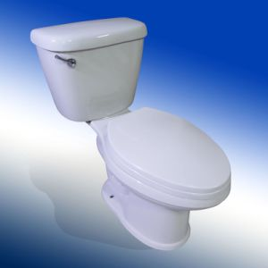 Elongated Two Piece Toilet, Tall Bowl