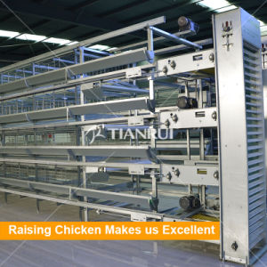 Automatic Chicken Battery Layer Cage for sales pictures & photos