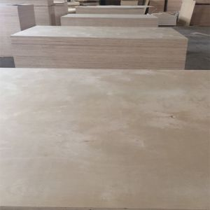 12mm White Birch Plywood for Furniture and Cabinet UV pictures & photos