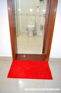 Hot Sale Modern Design Bath Door Floor Area Rug pictures & photos