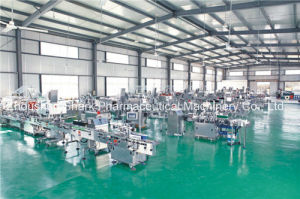 Automatic Sleeve Sealing & Shrink Packing Machine pictures & photos