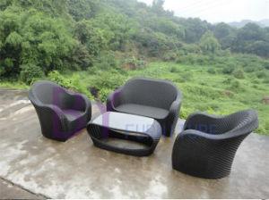 Rattan Sofa Set Garden pictures & photos
