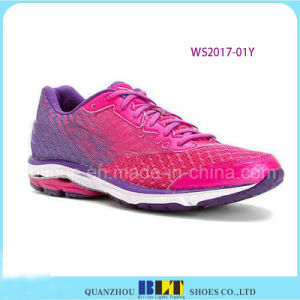 Most Colourful Sport Shoes for Wholesale pictures & photos
