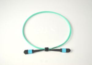 Multimode OM3 MPO-MPO Fiber Optic Patch Cord pictures & photos