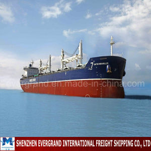 Reliable China Shipping Consolidation to Nicaragua pictures & photos