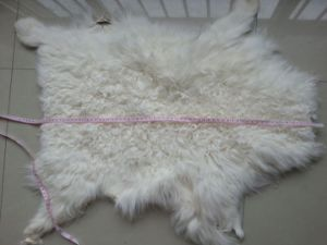 Sheepskin Tibet /Sheep Fur Skins pictures & photos