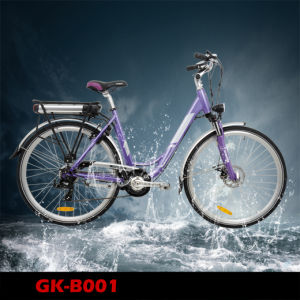 En15194 Approved Electric Bicycle 28 Inch for Lady pictures & photos