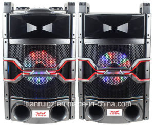 10inch Professional Audio System with LED Light 200W E244 pictures & photos