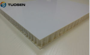 FRP PP Honeycomb Panel pictures & photos