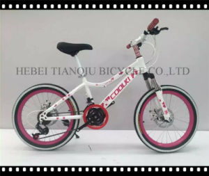 """Steel/Alloy Ce Approved 24""""-28"""" Mountain Bike, MTB pictures & photos"""
