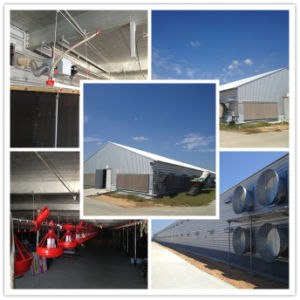 Prefab Metal Structure Buildings for Cold Room Storage, Workshop pictures & photos