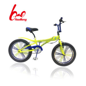Colorful Bicycle with Good Quality pictures & photos