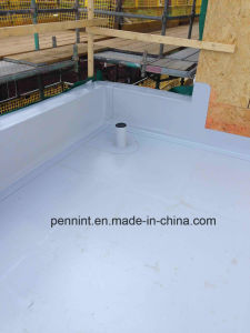 Fully Adhered 45 Mil Tpo Roofing Sheet pictures & photos