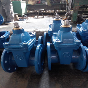 Pn16 Resilient Seated Gate Valve F4/F5 pictures & photos