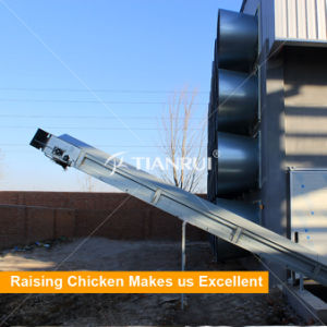 Farming port Automatic PP Belt End Chicken Manure Clean System pictures & photos