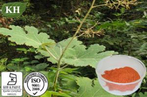Macleaya Cordata Extract: Total Alkaloids 60%, 98%; Sanguinarine 45%; Chelerythrine 15%; pictures & photos