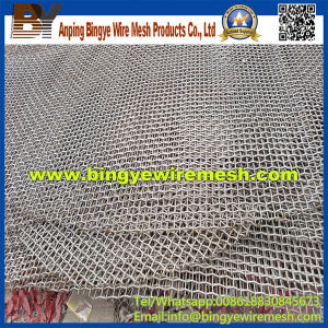 Stainless Steel Crimped Wire Mesh Discs pictures & photos