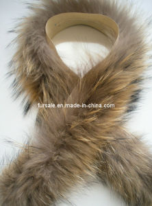 Winter Coat Raccoon Fur Trimming