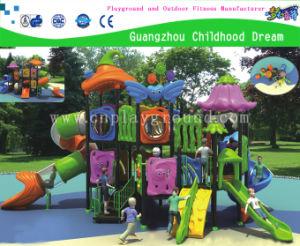 Sea Jinn Outdoor Playground for Amusement Park (HC-03501A) pictures & photos