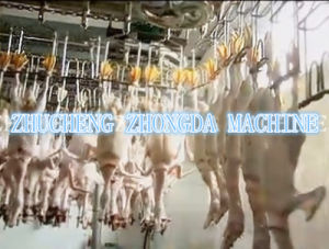 ISO SGS Duck Slaughtering Machine pictures & photos