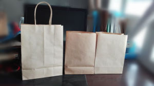 Kraft Paper Bags /Kraft Grocery Bag pictures & photos