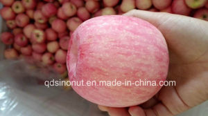 2015crop FUJI Apple (super quality) pictures & photos