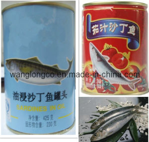 Fish (canned sardines)