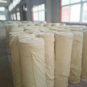 Woven Fusible Interlining Fabric for Cap pictures & photos