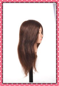 Human Hair Manequin Head 26inches for Hair Style Training pictures & photos