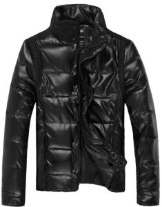 Men Fashion Casual High Quality Padding Winter Jacket pictures & photos