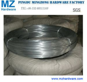 Electro Galvanized Iron Binding Wire pictures & photos