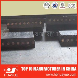 St630-St5400 Conveyor Belt with High Quality pictures & photos