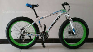 Steel Frame Fat Tire Mountain Bicycle (FP-MTB-FAT03) pictures & photos