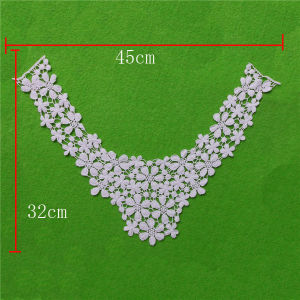 Embroidery Factory Direct Sale Cotton Lace Collar (cn54) pictures & photos