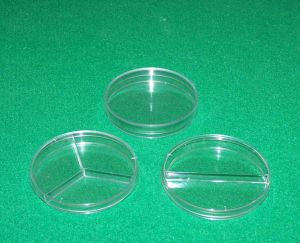 100 Mm Tissue Culture Dishes pictures & photos