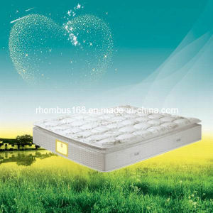 High Quality Memory Foam Pocket Coil Spring Mattress (RH040)
