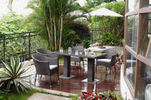 Outdoor Patio Rattan Dining Table Set (BZ- D083)