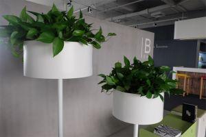 Uispair 100% Steel Modern Office Garden Decoration Floor Round Planter pictures & photos