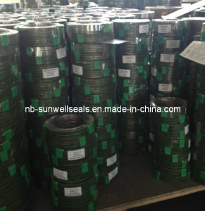Spiral Wound Gaskets Mechanical/Sealing Gaskets/Ss316L Graphite Gaskets (SUNWELL) pictures & photos