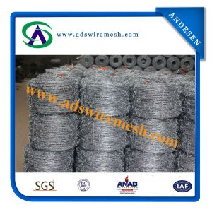 14X14 Galvanized/PVC Barbed Wire 30m Length Per Roll pictures & photos