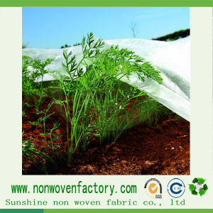 Ight Weight Nonwoven Fabric Agriculture Cover pictures & photos