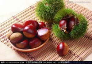 China First Quality Fresh Chestnut pictures & photos