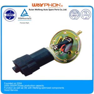 Wf-A07 Electric Fuel Pump Assembly (Related: 4307) for FIAT Opel pictures & photos