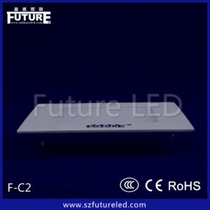 Suspended&Ceiling Mounted 300*300.24W LED Panel Ceiling Light pictures & photos