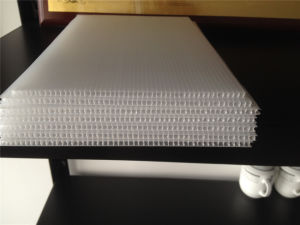 Waterproof Polypropylene Plastic Flute Board pictures & photos