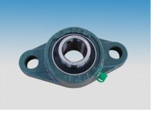 Pillow Block Bearings /Fl205 pictures & photos