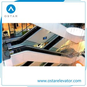 Beautiful Decorationed Parallel Escalators Used in Shipping Center pictures & photos